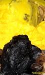 besciamella zafferano nero di seppia